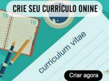 Criar Curriculo Profissional Online Agora Mesmo